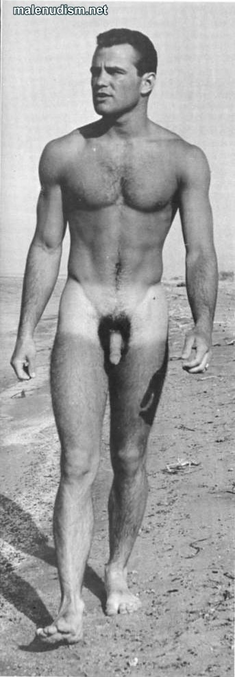 hairy chest muscle man nude